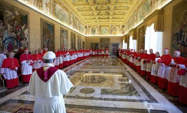 Pope to create new cardinals in 2014