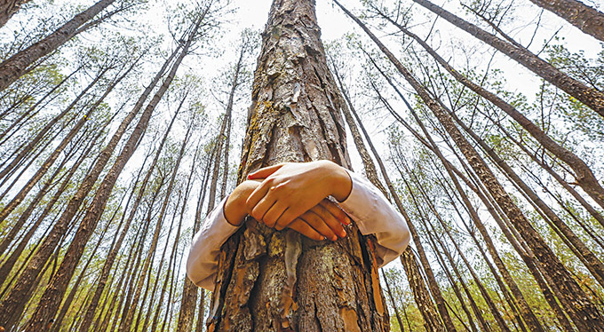 "A Nepalese man hugs a tree while celebrating World Environment Day at the forest of Gokarna, on the outskirts of Kathmandu, Nepal, in this 2014 photo. The greatest threats facing humanity are those ""that arise from global inequality and the destruction of the environment,"" said Cardinal Peter Turkson, president of the Pontifical Council for Justice and Peace. (CNS photo/Narendra Shrestha, EPA) See TURKSON-ECOLOGY and TOMASI-CLIMATE March 6, 2015."