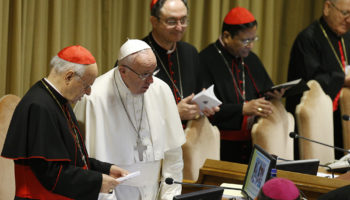 Without a doubt: Pope shares his thinking on key synod themes