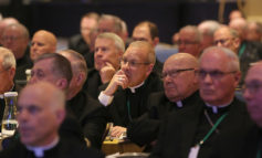Bishops vote to let Vatican inquiry proceed without commenting