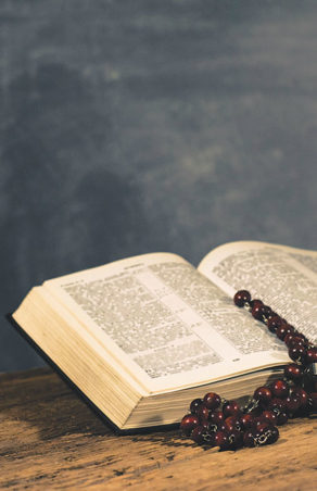 Father Esposito: The path of life in Psalm 16